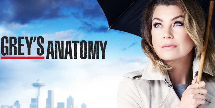 Grey's Anatomy Stagione 13